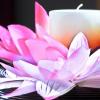 Benessere con Massaggi e Parole