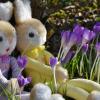 A Pasqua la dolcezza aiuta la ricerca!