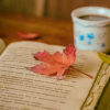 Consigli libri per l'autunno