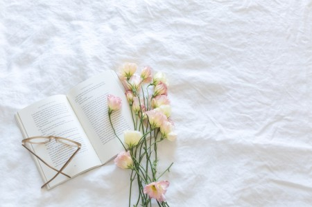 blanket-bloom-blooming-545049