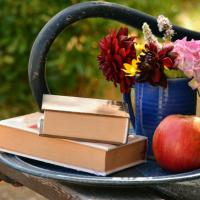 consiglio-libri-estate